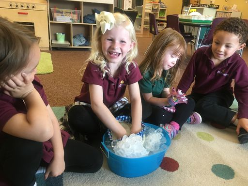 Junior Kindergarten Learns About Animal Habitats